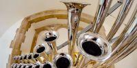 Trompete de Maris